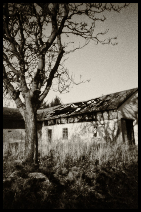 Abandoned farmhouse II